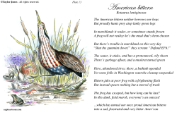 Field Guide for the Birds - Plate 13 -  by Taylor Jones