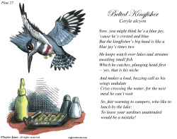 Field Guide for the Birds - Plate 27 -  by Taylor Jones
