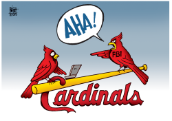 CARDINALS HACKING,  by Randy Bish