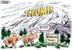 Trump Mountain by Jeff Koterba