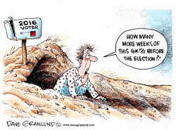 Groundhog Day and voters by Dave Granlund