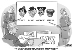 Gary Johnson Can't Remember Aleppo by RJ Matson