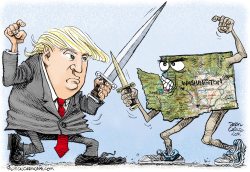Trump vs Washington by Daryl Cagle