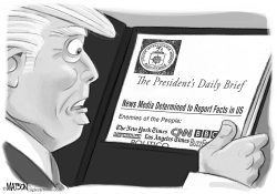 President Trump Daily Brief by RJ Matson