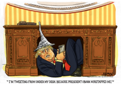 President Trump White House Safe Space- by RJ Matson