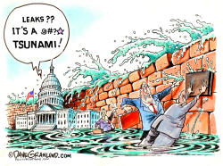Government leaks by Dave Granlund