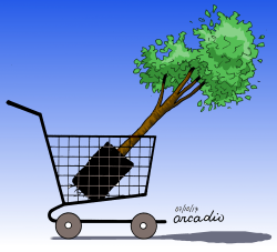 Adopt a tree by Arcadio Esquivel