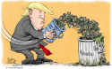 Trump Troops to Afghanistan by Daryl Cagle, CagleCartoons.com