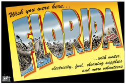 FLORIDA HURRICANE CLEAN UP,  by Randy Bish