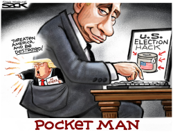 Pocket Man by Steve Sack