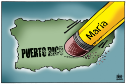 PUERTO RICO ERASED,  by Randy Bish