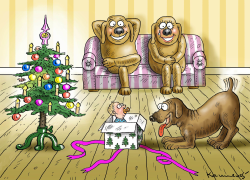 Dog Christmas Gift by Marian Kamensky