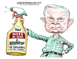 Jeff Sessions and marijuana by Dave Granlund