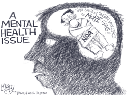 Insane NRA by Pat Bagley