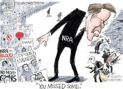 NRA r Us by Pat Bagley
