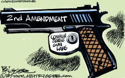 Protecting gun rights by Milt Priggee
