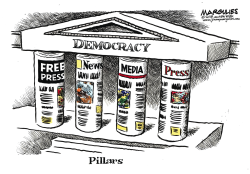 Freedom of the Press color by Jimmy Margulies