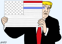 Trump colors a flag by Rainer Hachfeld