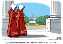 The Handmaid's Senators by RJ Matson