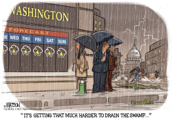 Rainy Washington Weather Makes it Harder to Drain the Swamp by RJ Matson