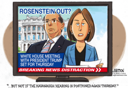 Rod Rosenstein Breaking News Distraction by RJ Matson