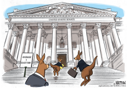 Kavanaugh Hearing Kangaroo Court by RJ Matson