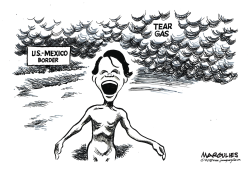 Tear gas at the border by Jimmy Margulies