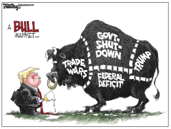 A Bull Market by Bill Day