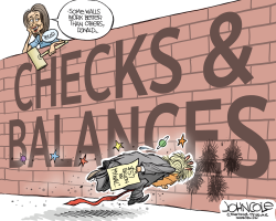 Pelosi's wall by John Cole