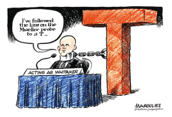 Whitaker Hearing by Jimmy Margulies