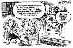 Patriot Act by Jimmy Margulies