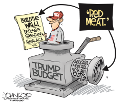 Trump's red meat budget by John Cole