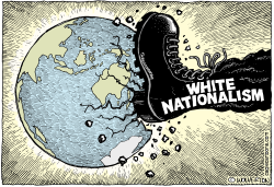 White Nationalism by Wolverton