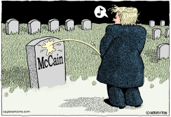 Trump on McCain by Wolverton