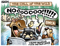 BWCA Blues by Steve Sack