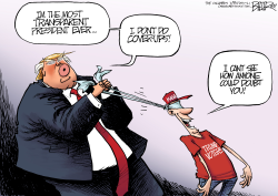 Trump CoverUp by Nate Beeler