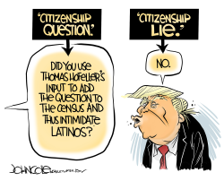 The citizenship lie by John Cole
