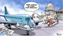 Mueller and Democrats by Paresh Nath