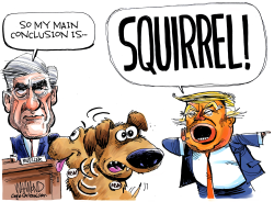 Mueller Distraction by Dave Whamond