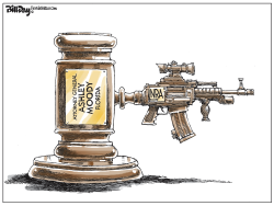 NRA Power in Florida by Bill Day