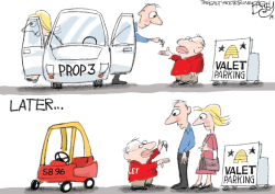 LOCAL Prop 3 Switch by Pat Bagley