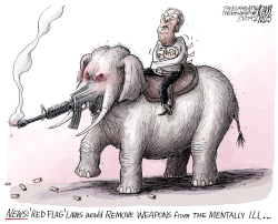 Red Flag laws by Adam Zyglis