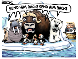Greenland Deal by Steve Sack