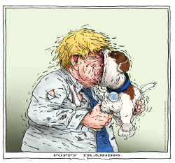 puppy training by Joep Bertrams