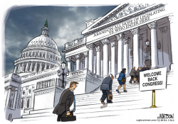 Welcome Back Congress by RJ Matson