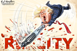 Trump Sharpie Reality by Ed Wexler