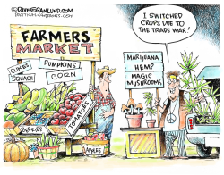 Trade war and alternative crops by Dave Granlund