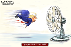 Trump Hit The Fan by Ed Wexler