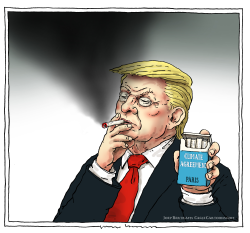 smoking kills by Joep Bertrams