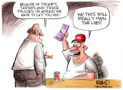 Owning the Libs by Dave Whamond